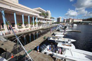 IBEX Docks