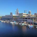 IBEX Tampa Florida